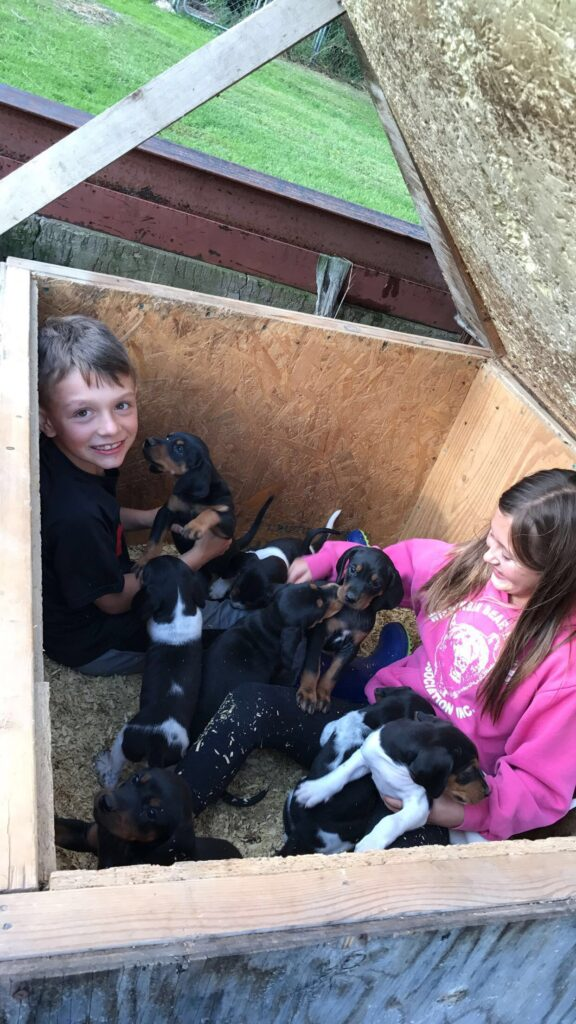 February 2018 | Alissa Durham | One of our hounds had puppies and when we let the mom out to get some exercise my niece and nephew hopped into the kennal go get closer to all eight puppies!